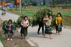 ha giang village, children with bundle, village in ha giang